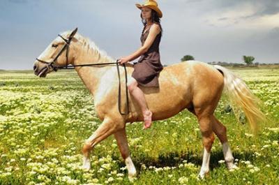 Поход на лошадях в Алтае фото
