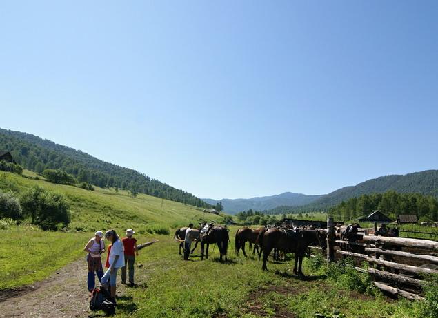 с детьми на лошадях фото